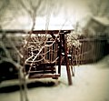 -project2013.013 My own private winter (8377601586).jpg