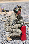 101st Combat Aviation Blackhawk DVIDS322485.jpg