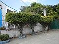 109San Mateo, Rizal Barangays Landmarks 43.jpg