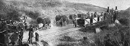 Photo d'un convoi où évoluent en parallèle une voie ferrée et des attelage tractés par des bœufs.