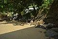 1701-praia-do-cais-0006.jpg