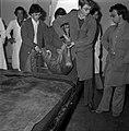 18.05.76 à l'école vétérinaire de Toulouse, opération d'un brocard jeune cerf (1976) - 53Fi894.jpg