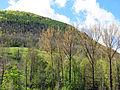 194 Muntanya de Sant Antoni (Camprodon).JPG