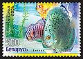 2006. Stamp of Belarus 0671.jpg