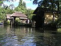 2007-08-13 Yorozui-River Canoe touring 蓼川・万水川カヌーツーリング(カヤック壇上晴一)P8138828.jpg