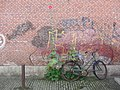 2009 Bicycle in Amsterdam.jpg