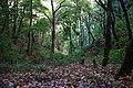 2012-10-26 13-27-25 Pentax JH (49282359526).jpg