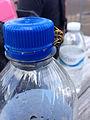 2014-08-24 14 25 31 Yellow Jacket on a Pepsi bottle at Pennridge Airport in East Rockhill Township, Pennsylvania.JPG