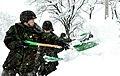 2014.2.10 육군23사단 폭설대민지원 ROK Army 23 reg.service for civilians in snowfall (12452217564).jpg
