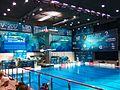 2017 European Diving Championships - 1m Springboard Women - Final 08.jpg