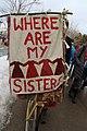 2018 Women's March in Missoula, Montana 78.jpg