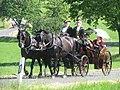 21te Rammenauer Schlossrundfahrt der Pferdegespanne (037).jpg