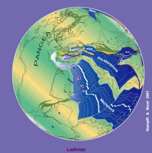 plate tectonics 230 ma (Triassic, Ladinium stage)