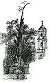 293-Tree of La Noche Triste.jpg