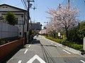 3 Chome Minamisakurazuka, Toyonaka-shi, Ōsaka-fu 561-0882, Japan - panoramio - yokoyokoi.jpg
