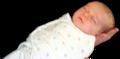3 week old swaddled infant.png