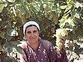 45450 Kendirlik-Ahmetli-Manisa, Turkey - panoramio.jpg