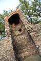 4997viki Paczków - mury obronne. Foto Barbara Maliszewska.jpg