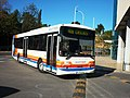 501 ScottUrb - Flickr - antoniovera1.jpg