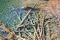 A6 九寨沟 20111108 liuzusai QQ:896372252 - panoramio (15).jpg