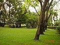 AIT - panoramio - Seksan Phonsuwan (89).jpg