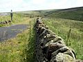 A Boundary Wall alongside the Trans Pennine Trail East - geograph.org.uk - 490206.jpg