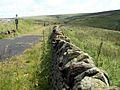 A Boundary Wall alongside the Trans Pennine Trail East - geograph.org.uk - 490206.jpg