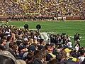 A Michigan Team Being Honored, Michigan Stadium, University of Michigan, Ann Arbor, Michigan (21745785385).jpg