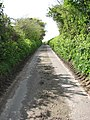 A Quiet Lane - geograph.org.uk - 785698.jpg