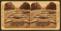 A beautiful garden avenue in Fairmount Park, Philadelphia, Pa, from Robert N. Dennis collection of stereoscopic views 3.png