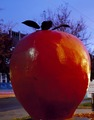 A large apple represents the town symbol, Winchester, Virginia LCCN2011632279.tif