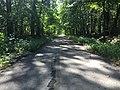 Abandoned Reed Road.jpg
