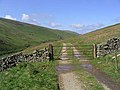 Access track and gate - geograph.org.uk - 440775.jpg