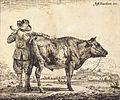 Adriaen van de Velde - Bull - WGA24489.jpg
