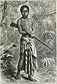 Africa (1878) (14589702089).jpg