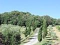 Agriturismo il Pratone (Montegemoli) - panoramio (2).jpg