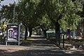 Albert Park VIC 3206, Australia - panoramio (19).jpg