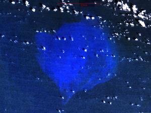 Alice Shoal - NASA Landsat image of Alice Shoal