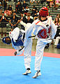 All-Army TKD competes at US Nationals 150708-Z-ZS194-024.jpg