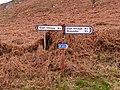 All roads lead to Elan Village - geograph.org.uk - 152287.jpg