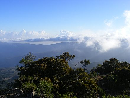 View of the 馬多山脈 Mountains, home to numerous endemic species.