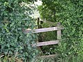 Almost lost in the undergrowth - geograph.org.uk - 874873.jpg