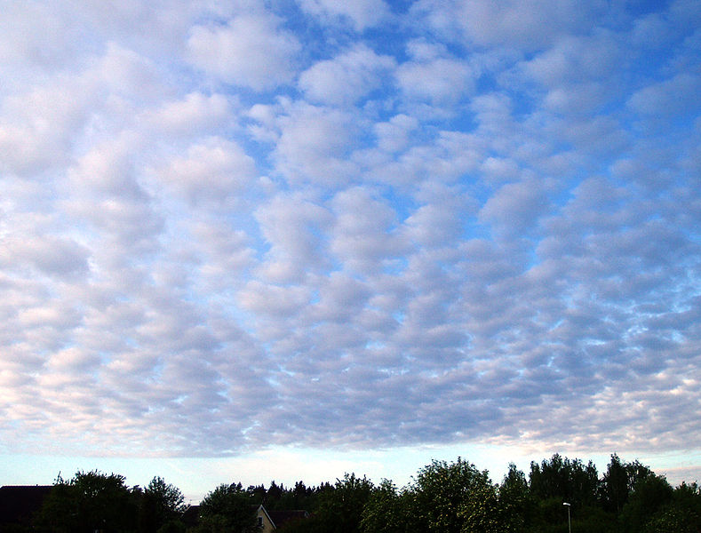 stratocumulus - Wikidata |Stratocumulus Clouds Description