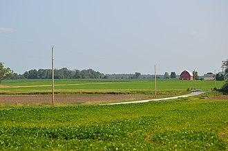 Amanda Township, Hancock County, Ohio - Soybean fields south of Vanlue on County Road 26