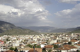View of Amfissa.