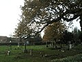 An autumnal churchyard at St John's, Rowland's Castle - geograph.org.uk - 1590273.jpg