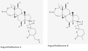 Angustifodilactone - Angustifodilactone A and B