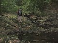 Anino River.jpg