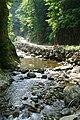 Anmon falls footpath - panoramio.jpg