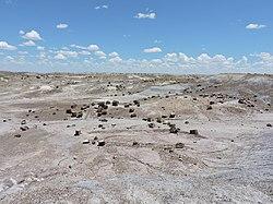 Apache County, AZ, USA - panoramio.jpg